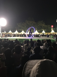 大道芸2017静岡2.jpg
